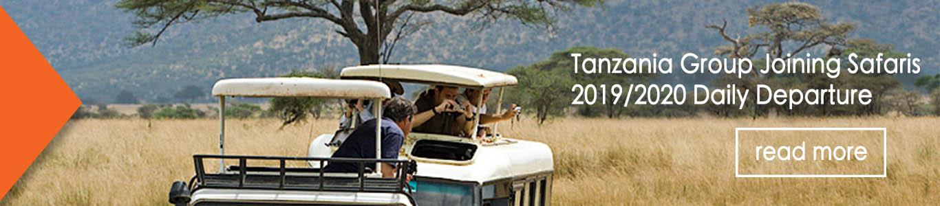 Tanzania Group joining safaris 2019/2020