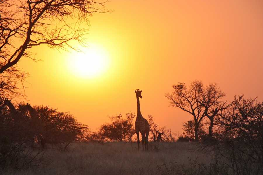 How to Pack and Prepare for your African safari