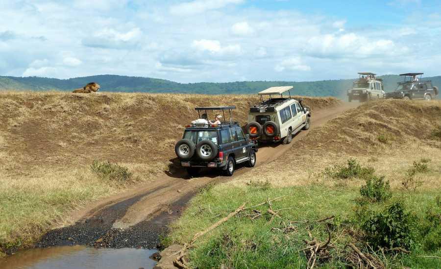 4 Day Tanzania camping Safari,  Serengeti National Park, Tanzania
