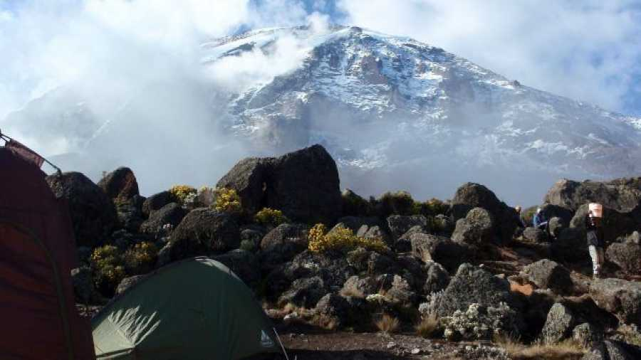 Join a Group for 7 Days Lemosho Route Kilimanjaro Climb