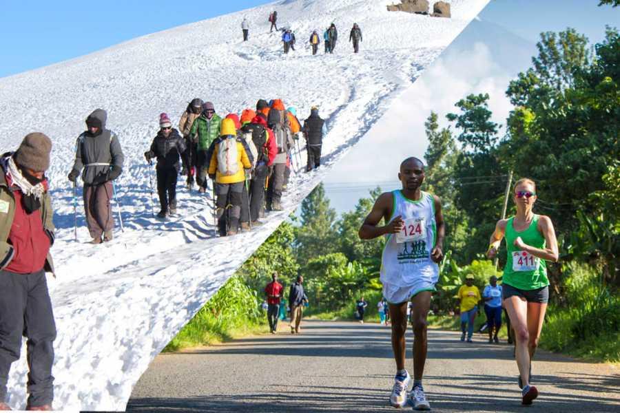 Kilimanjaro Marathon 2019 and 6 Days Machame Route Kilimanjaro Climb,  Mount Kilimanjaro, Tanzania